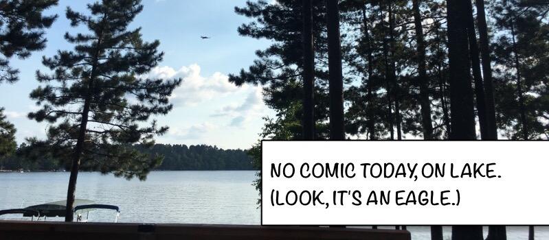No Comic Today